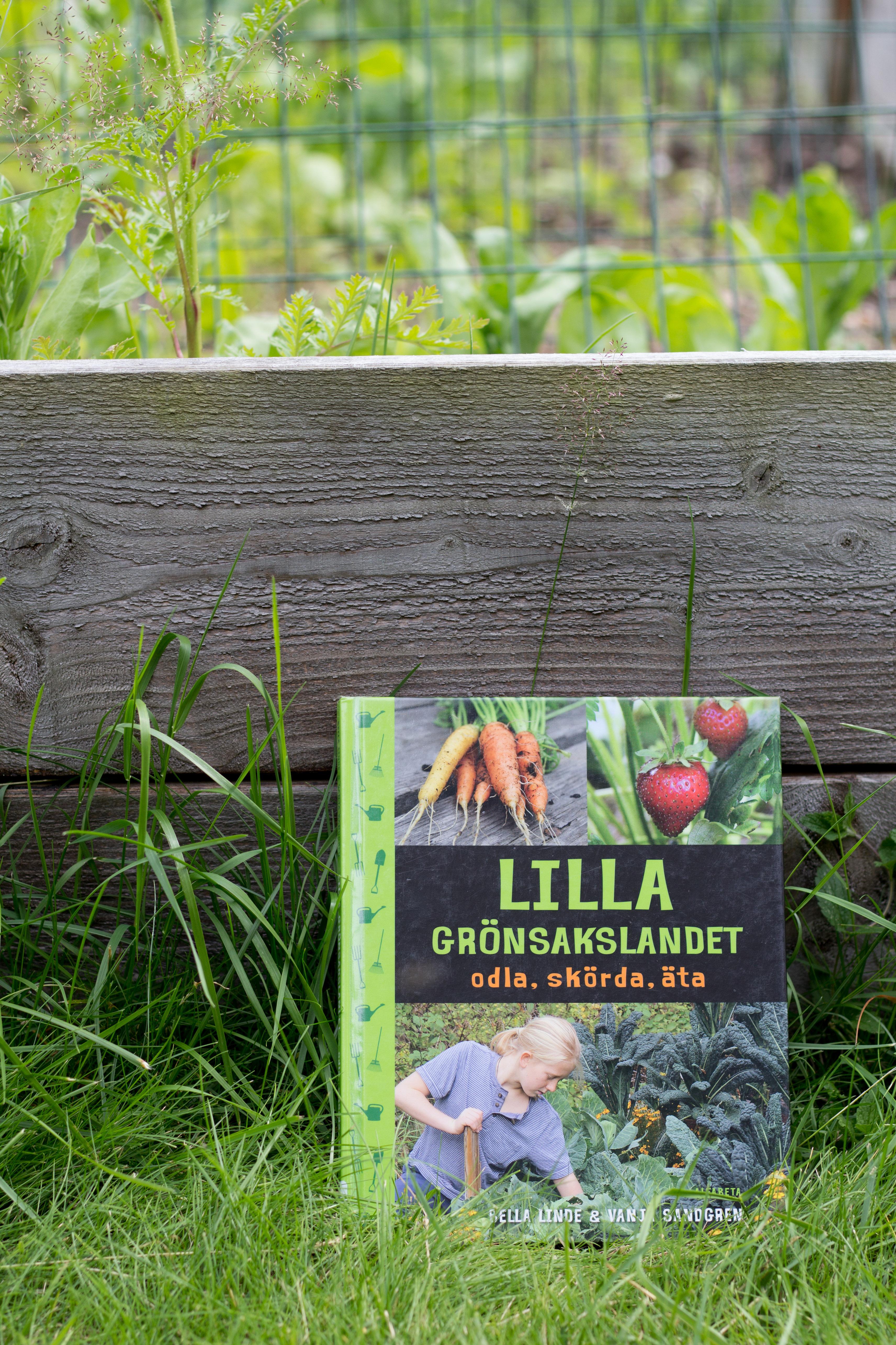 Boken lilla grönsakslandet stående mot en odlingslåda