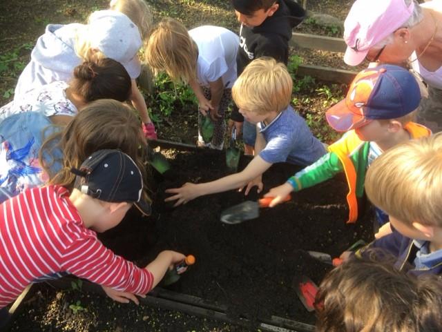 barn odlar på skola